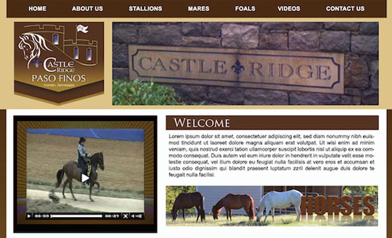 Castle Ridge